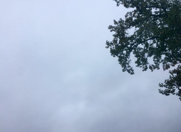 2017-09-13_07-39-01_930